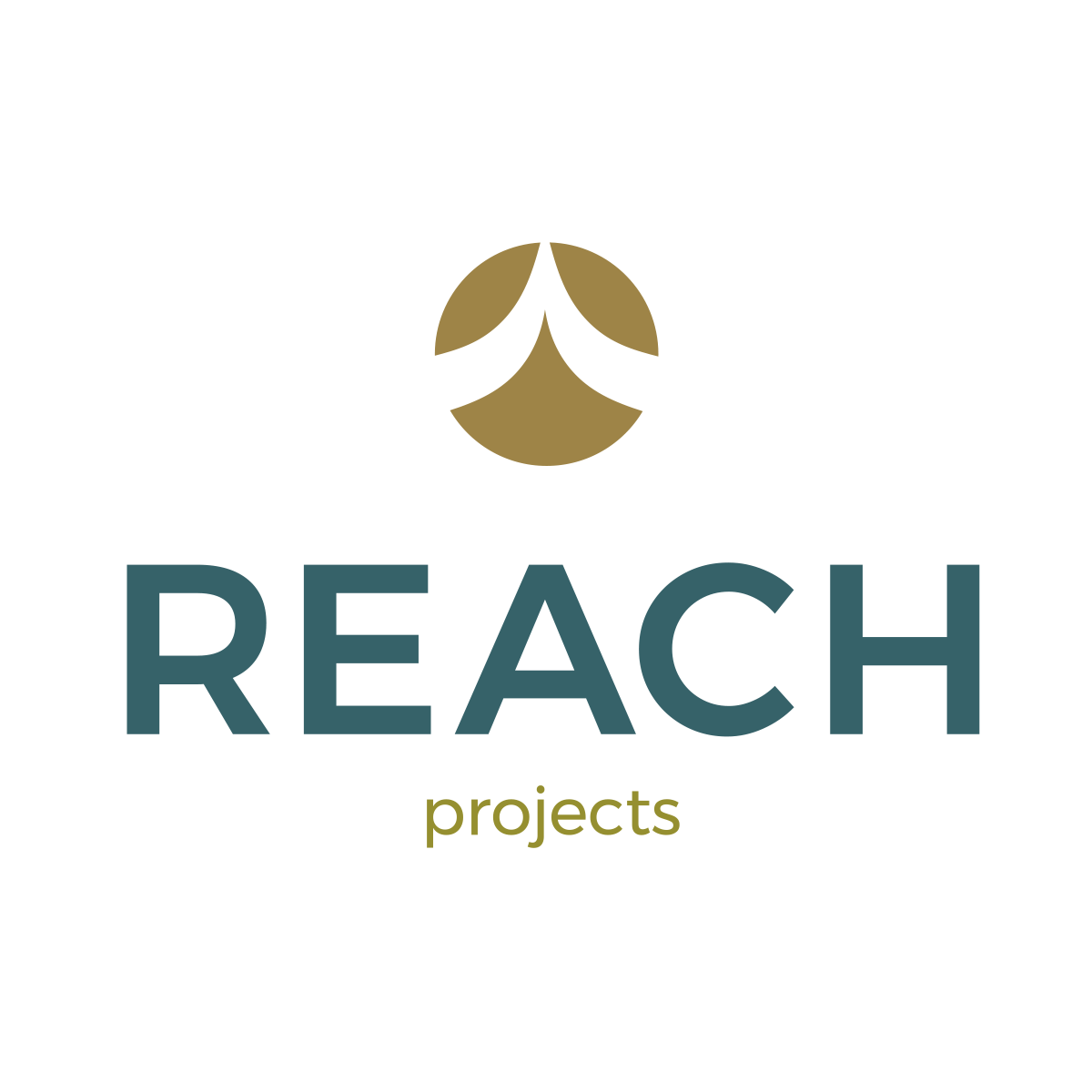 REACH Projects.png